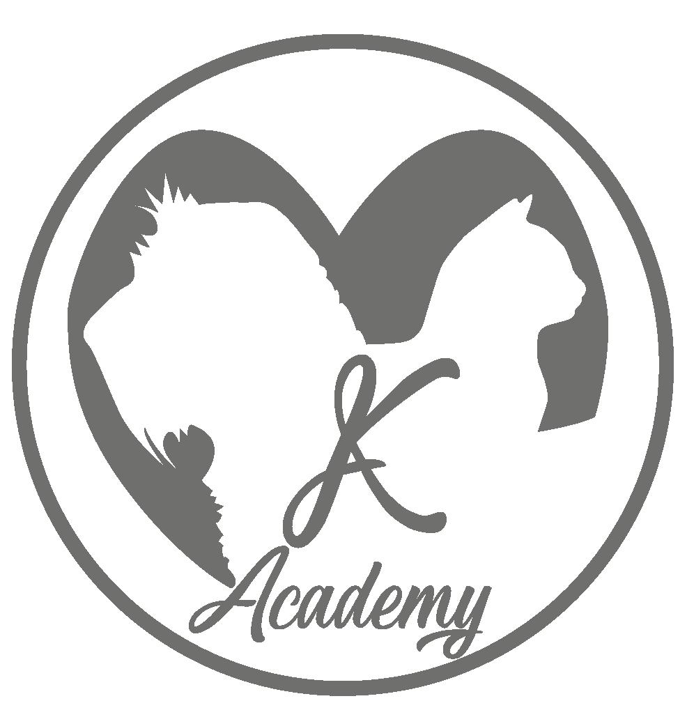 Academy large-02