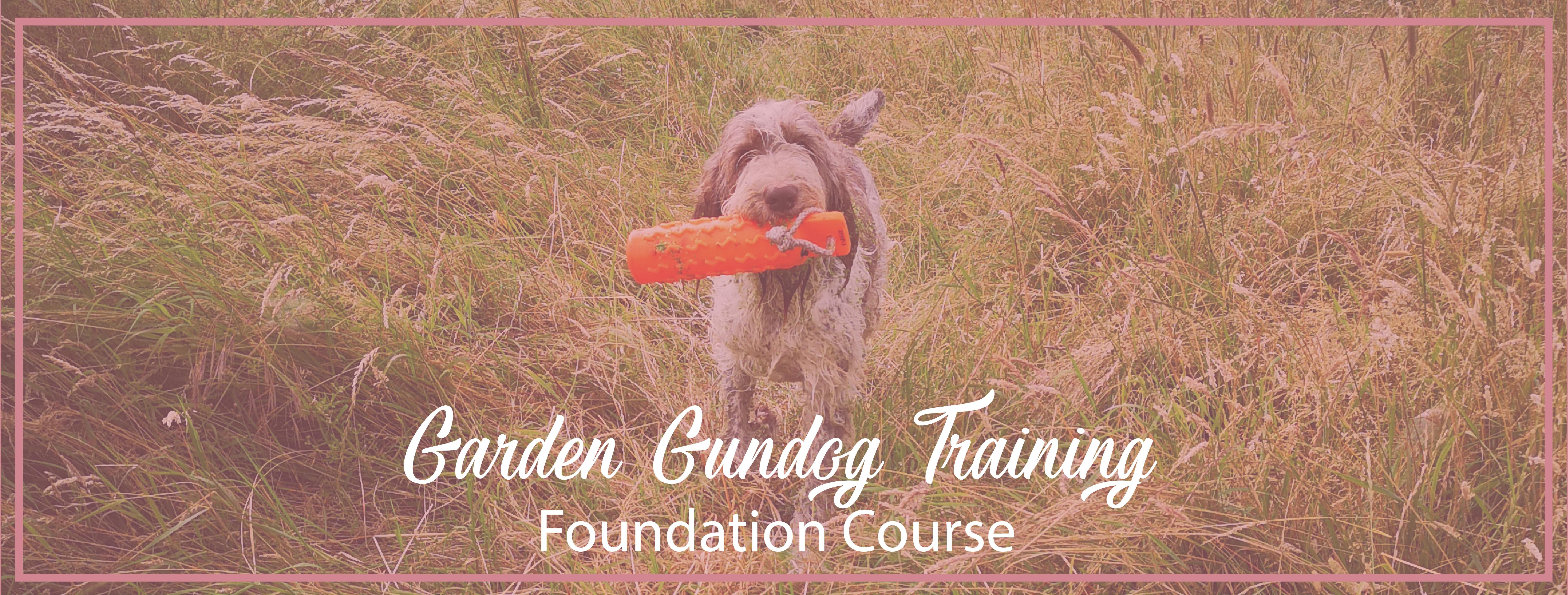 GGundog Foundation Course-01