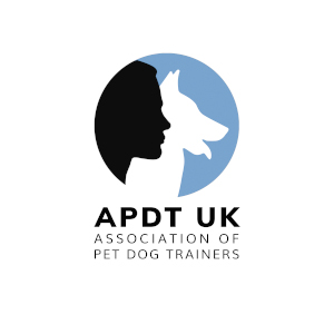 SMALL APDT Logo